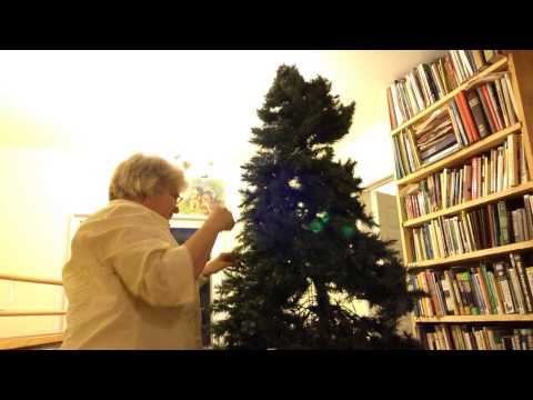 Nancy Today: Christmas tree branches