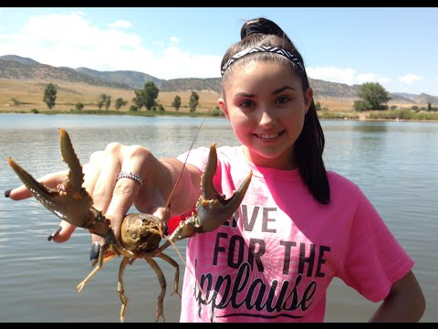 Crawfishing Colorado, Jake's How to Crayfish.  Crayster's Field Researcher Episode 1