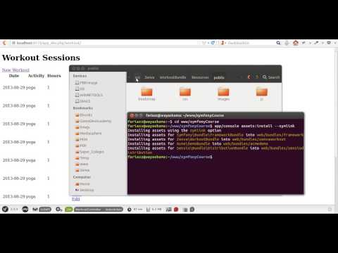 How to Include JavaScript and CSS Files in Symfony, Symfony Assets Tutorial