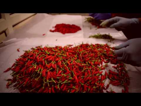 Chilli Infused Extra Virgin Olive Oil - How Chili Olive Oil Made | Azafran Infusions