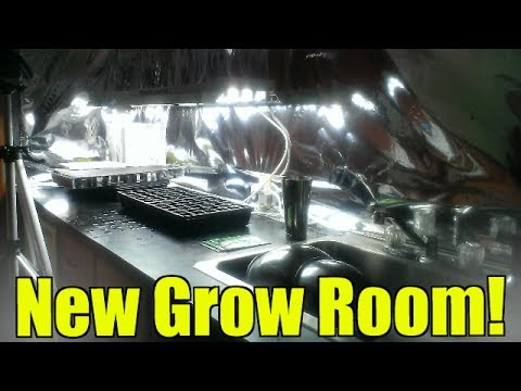 New Grow Room (Indoor Gardening)