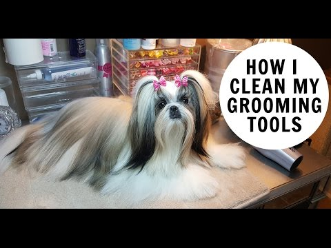 HOW I CLEAN MY DOG GROOMING TOOLS