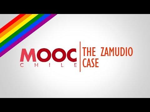 Gender Equality & Sexual Diversity | Lesson 26: The Zamudio Case and the Chilean Anti Discriminatio