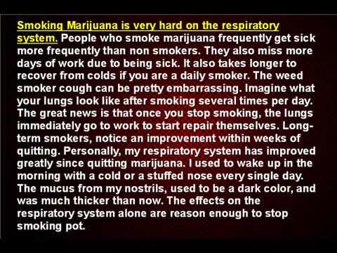 Stop Smoking Pot - The Physical Effects of Marijuana Abuse