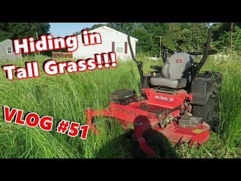 Mowing With SEF -