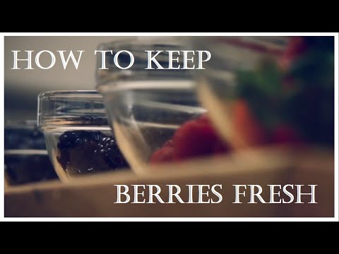 In The Kitchen with Nathaniel Nguyen: How to Keep Berries Fresh For Up to 2 Weeks
