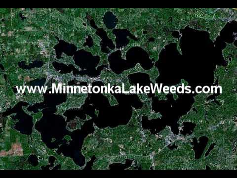 Minnetonka Lake Weed Control