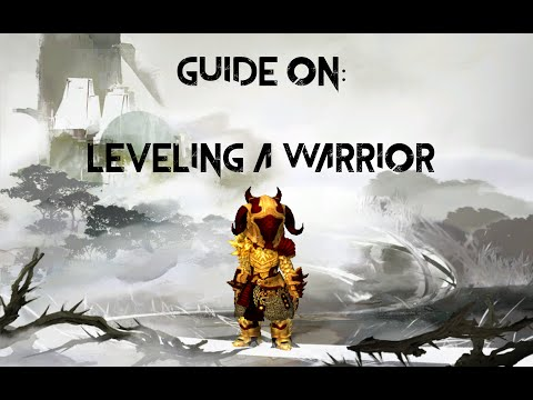 Leveling a Warrior