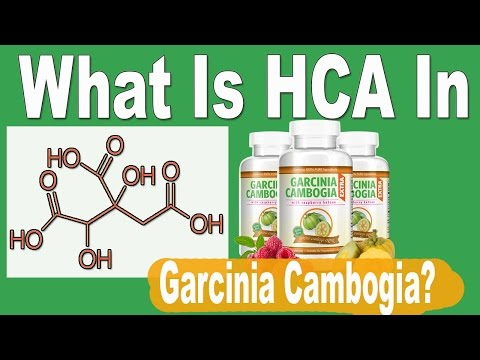 What Is Hydroxycitric Acid (HCA) In Garcinia Cambogia - Does It Work?