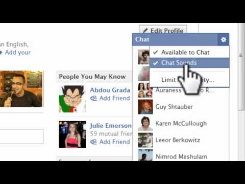 How To Use The New Facebook Chat Feature 2011