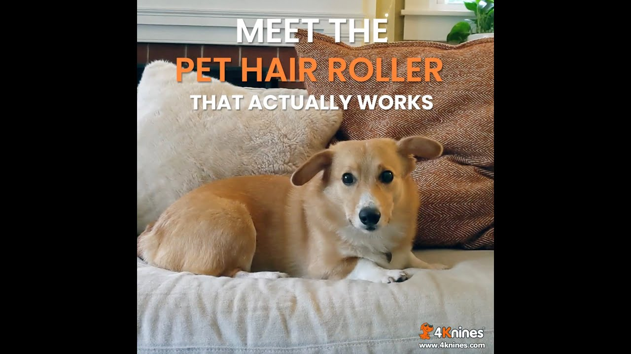 Reusable Pet Hair Roller - For Dogs, Cats And Other Pets - For Your Couch, Bed, Clothing And More