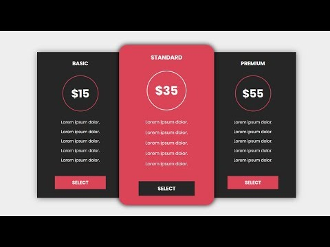 Pricing Table with html and css | CSS3 Animation Snippets