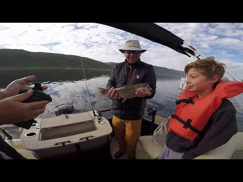 Strawberry Reservoir Utah June 4 2017 fishing with my boys..