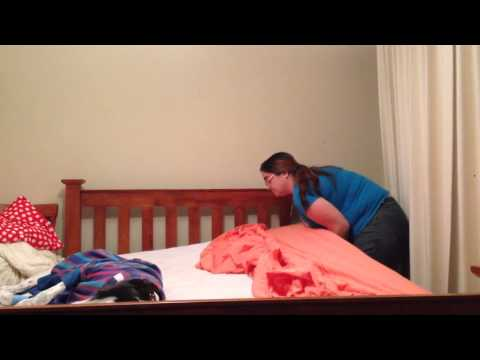 How many greyhounds does it take to change a bed sheet?