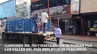 """Entre """"perreras"""" se mueven los pasajeros de Venezuela"""