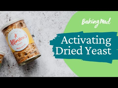 How to Activate Dried Yeast | Baking Mad