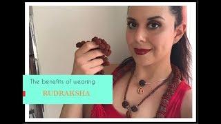 What is Rudraksha and Why Should YOU Wear it?