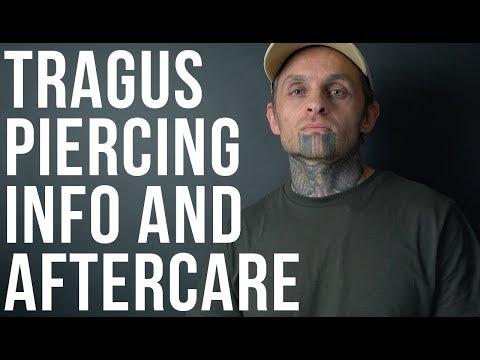 Tragus Piercing Info & Aftercare | UrbanBodyJewelry.com