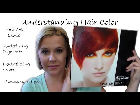 Understanding Hair Color●Levels●Underlying Pigments●Neutralizing●Tint-Backs/Fillers