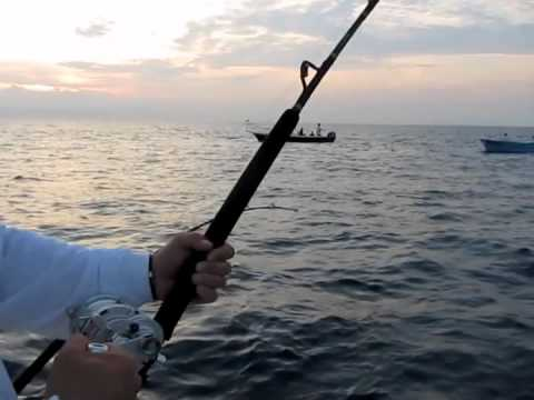 Catching Giant Squid in the Sea of Cortez