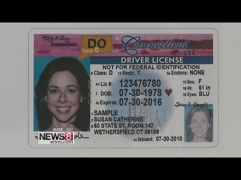 Undocument immigrants can now sign up for CT driver's licenses