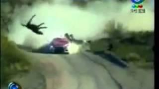 cars win! animals fail!