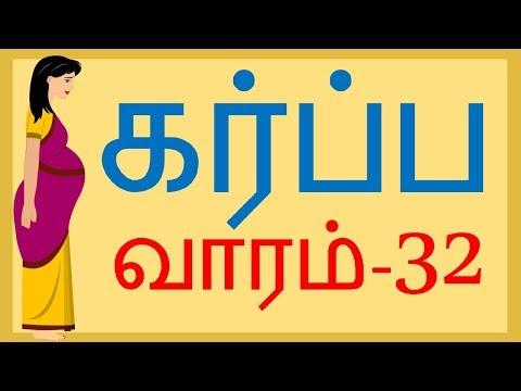 The Pregnancy  Tamil   Week by Week   Week 32