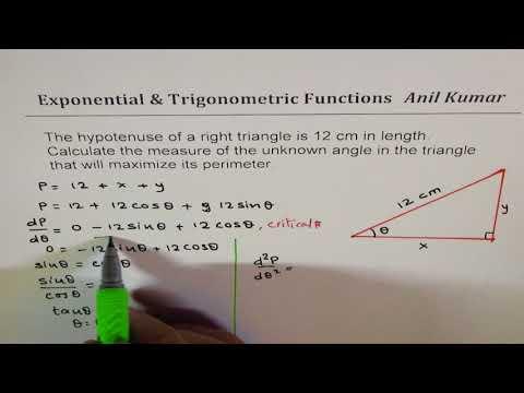 Optimization Trigonometric Function Maximum Perimeter for Hypotenuse of 12