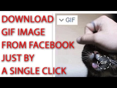 How to download GIF Images from Facebook - Facebook GIF Downloader
