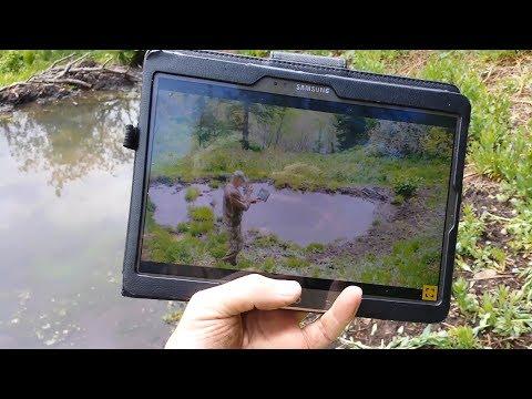 Defender 850 Trail Camera Live Preview Via WiFi