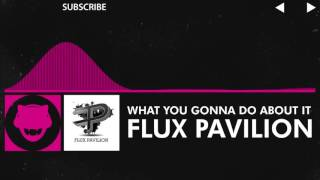drumstep flux pavilion  what you gonna do about it