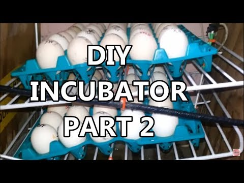 (Part 2) Build an Incubator for les than 2000 Pesos ($40)