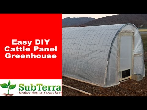 Easy DIY Cattle Panel Greenhouse or Hoop House