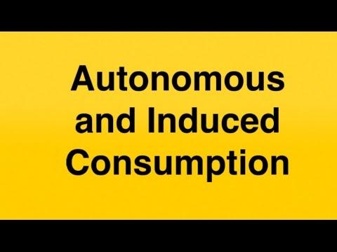 Autonomous and Induced Consumption