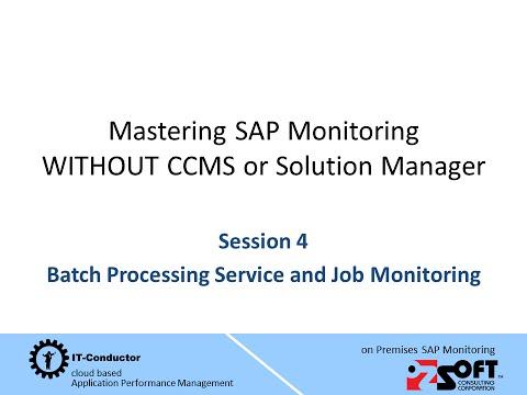 Mastering SAP Monitoring Session 4 - Batch Management & SAP Job Monitoring