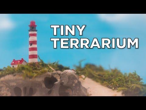 How to Make a Tiny Terrarium