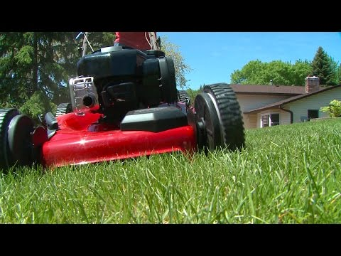 We Tried It! Briggs and Stratton Engine/Craftsman Lawn Mower