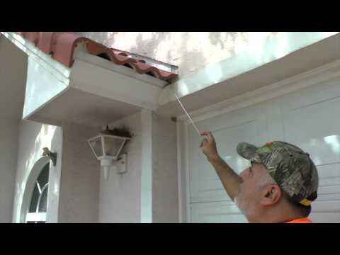 How to keep rats from entering Barrel Tile Roof, Norway Roof rats, Rat entry points, Melbourne, FL
