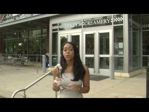 Penn State Study on Sugar and Fat Levels in Chocolate Ice Cream