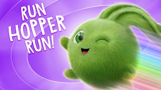 🔴  LIVE SUNNY BUNNIES TV   Run Hopper Run   Cartoons for Children