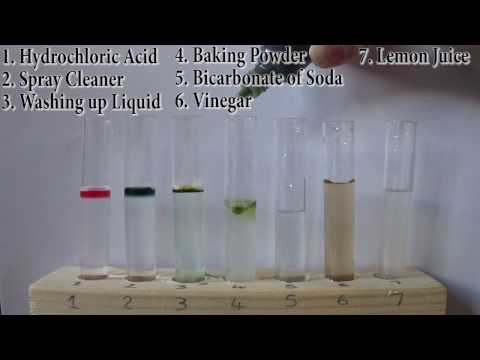Testing Household Products For Their PH Levels | Acid || Neutral || Alkaline |