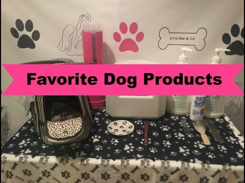Favorite Dog Products | Collab with Why Does My Dog?