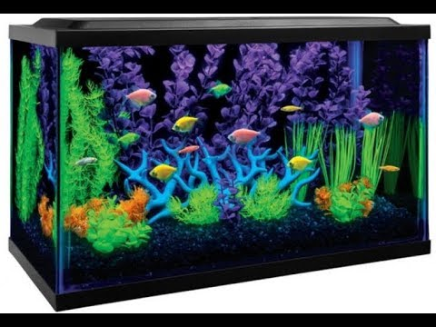 how to clean your fishtank clear as glass