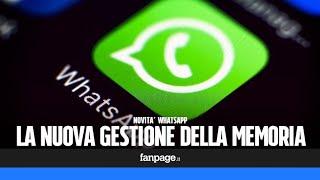 Novità aggiornamento WhatsApp: come eliminare i file che consumano troppo spazio e liberare memoria