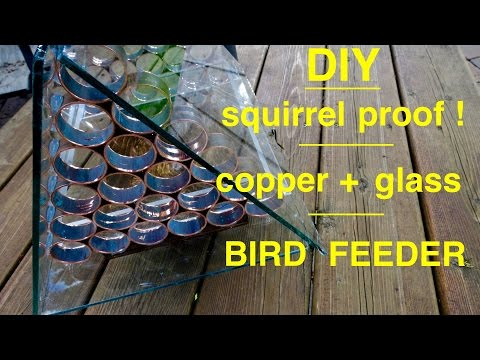 How to make ● a  SQUIRREL PROOF  Bird Feeder