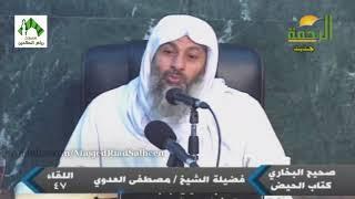شرح صحيح البخاري (47) - للشيخ مصطفى العدوي