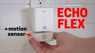 Echo Flex Review and Where to Use It
