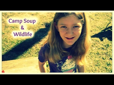 Camp Soup and Wildlife
