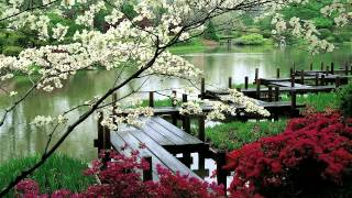"""3 HOURS """"Zen Garden"""" 