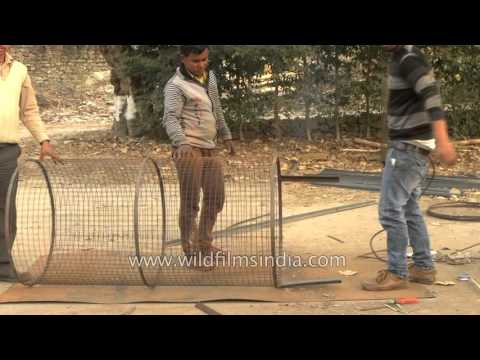 Welding tree guards in India